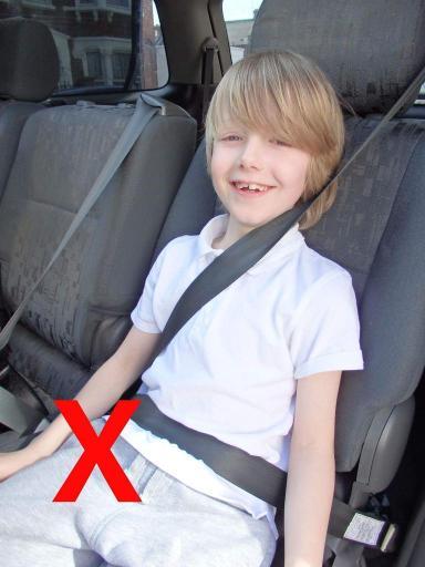 cinturón coche niños