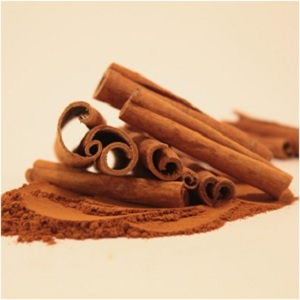 The Yuletide Spice: Cinnamon Magical Properties and Uses -- Magical Herbs