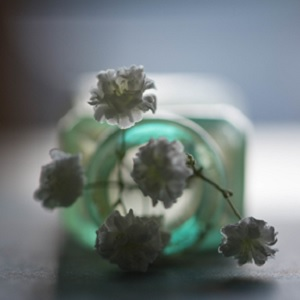 Baby's Breath flowers in a Green Jar • The Meaning of Baby's Breath Flowers