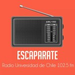 Escaparate-XYAA73l9