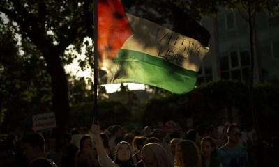 Palestina Libre 1350x900