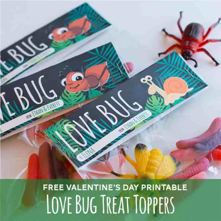 Free Valentine's Day Love Bug Treat Topper