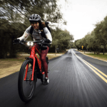 El año de la bicicleta eléctrica