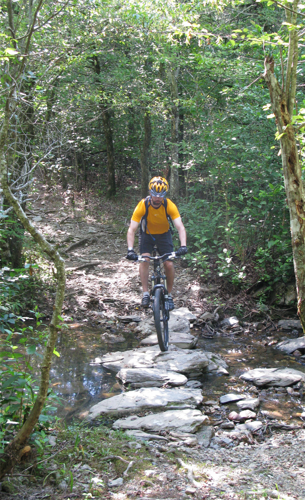 the womble trail - our first mountain bike ride was great!