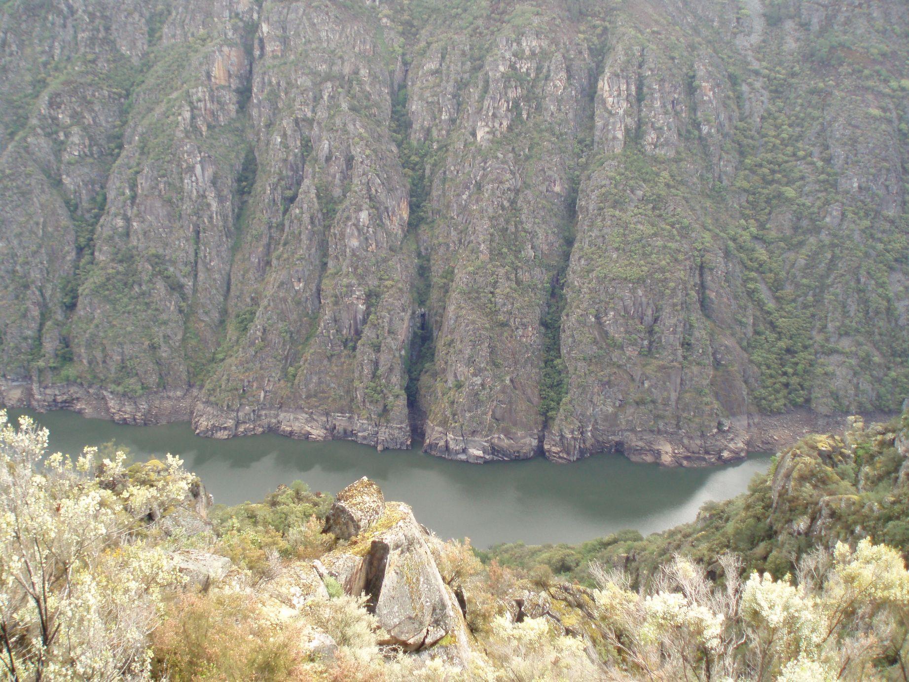 Pared vertical sobre el río
