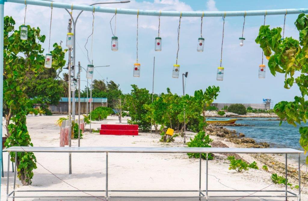 maldives budget travel fly to maldives maldives offers maafushi beach maldives