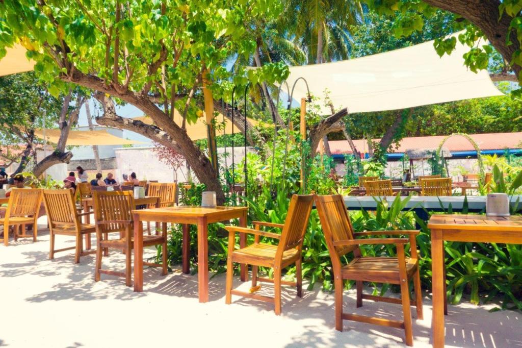 maldives travel guide Maldives local island