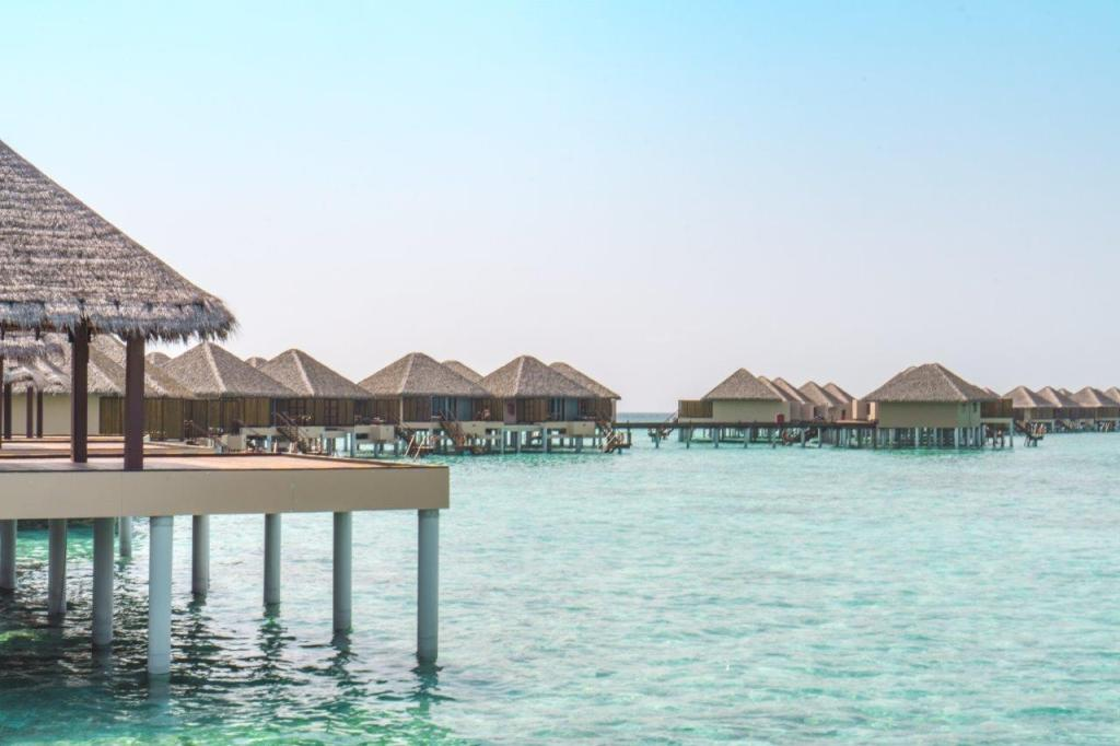 what to see in maldives best budget resorts in maldives