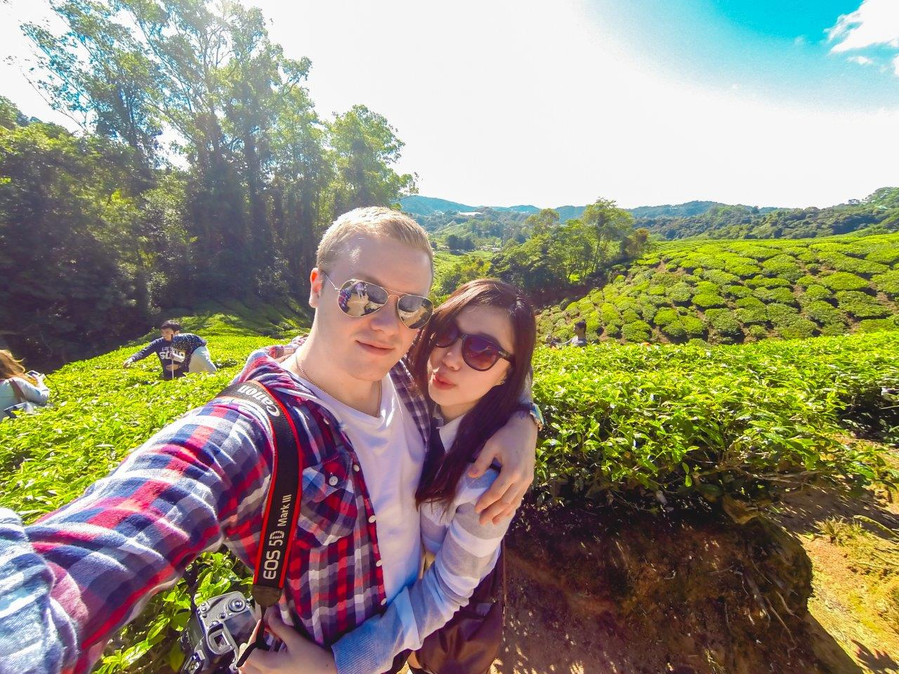 cameron highlands tea plantation places to visit