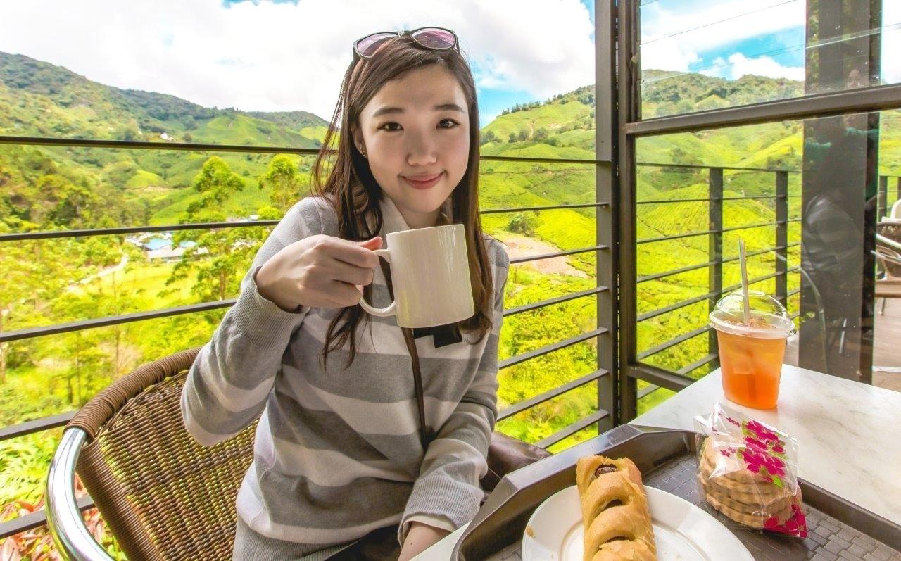 places to go in cameron highland boh tea cameron