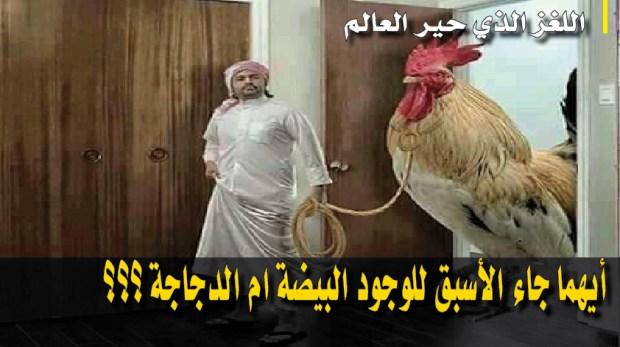 اللغز الذي حير العالم.. ايهما جاء الأسبق للوجود البيضة ام الدجاجة ؟؟؟