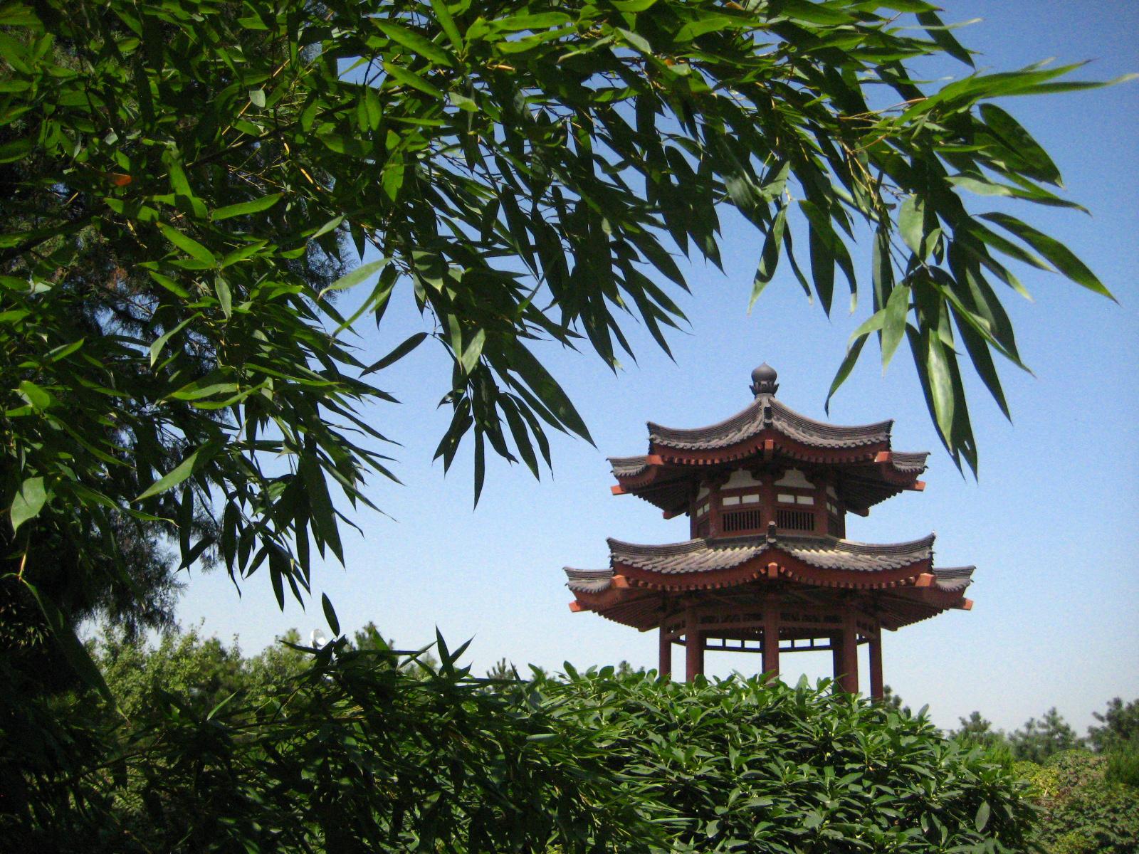 Giardino buddista a XiAn