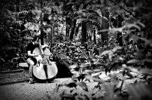 Musico ensaiando no Parque Thrianon Masp | SP | Elza Cohen