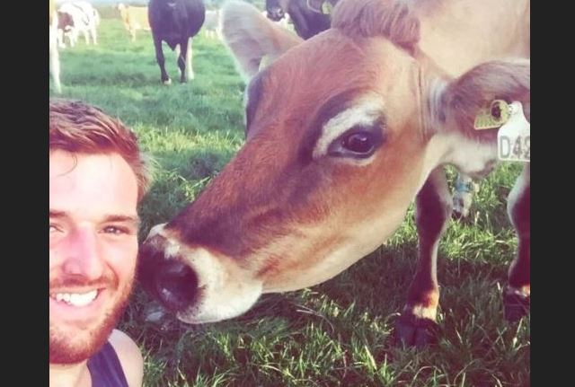 Char, la nueva vaca más sexy de Gran Bretaña