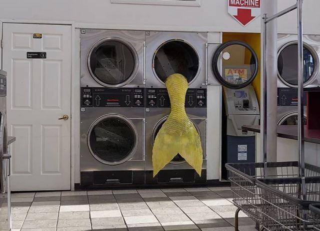 Colas de sirena de colorines emergen en una lavandería de Los Ángeles