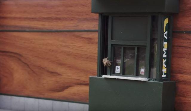 Abre el McDonald's más pequeño del mundo para abejas