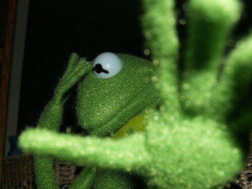 Memes Do Sapo Do Muppet Com Frases Do Raca Negra Photos Facebook