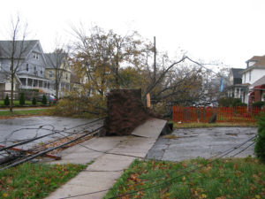 Hurricane Sandy damage underscores the need for distributed power. Credit: Ann Oro, FlickrCC