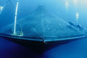 sustainable aquaculture — Credit: Oceanic Institute, NOAA