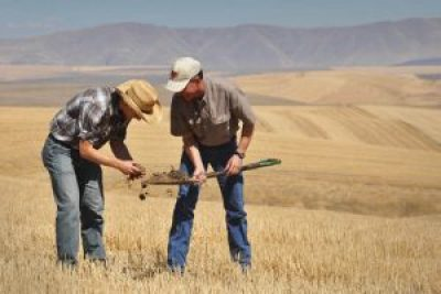 Hacks for Farmers. Credit: USDA NRCS photo by Ron Nichols, FlickrCC