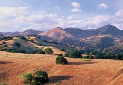 The Sedgwick Reserve of the Santa Barbara Land Trust. © Santa Barbara Land Trust