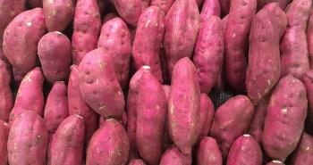 Beneficios Batata doce