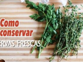 conservar ervas frescas