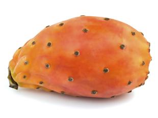 cactinea fruta do Opuntia fícus-indica