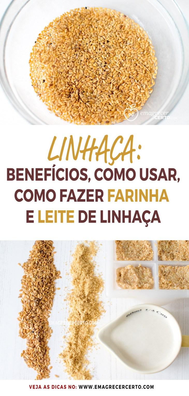 Linhaça, benefícios, como usar, como fazer a farinha e o leite de linhaça   Blog EmagrecerCerto.com