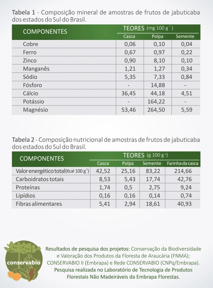 Valor nutricional Jabuticaba no blog Emagrecer Certo
