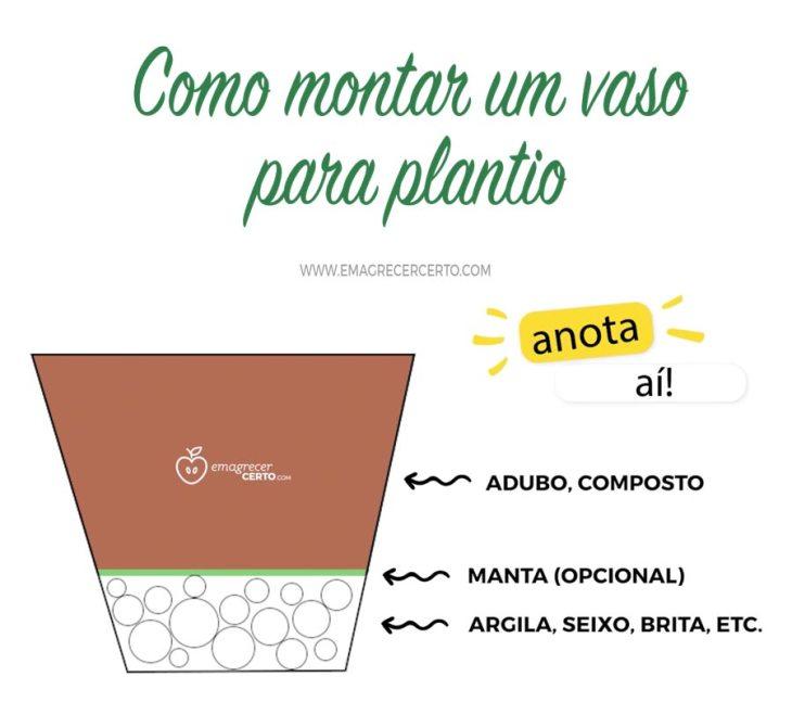 Como montar um vaso para plantio - drenagem - Emagrecer Certo - Horta em Casa #horta #plantio #temperos