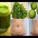 """Detox Depurador """"elimina a gordura e os excessos consumidos na jornada"""""""