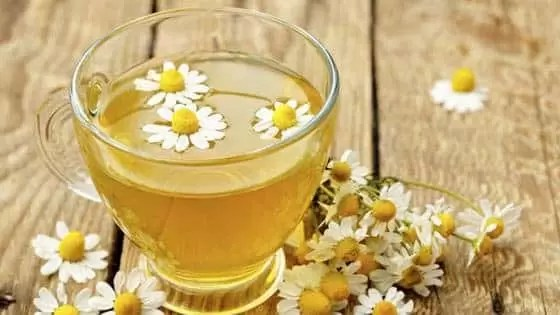 Chá caseiro para diabetes - Camomila