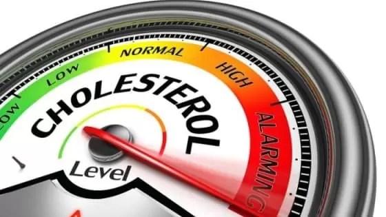 Níveis Normais de Colesterol HDL LDL e Total 2