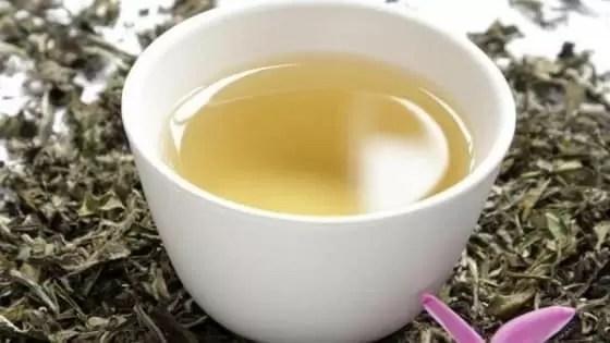 Chá para Baixar Colesterol Alto Caseiro