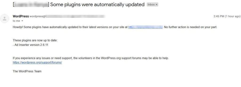 Wordpress plugin auto update email notification