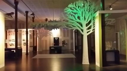 EmaLaScoala_Muzeul de stiinte (19)