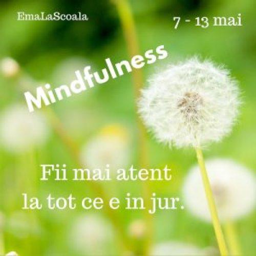 mindfulness la scoala