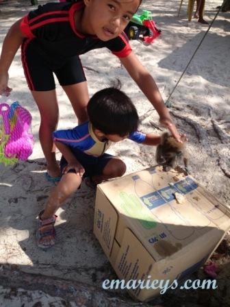 Mereka berdua berani pegang monyet