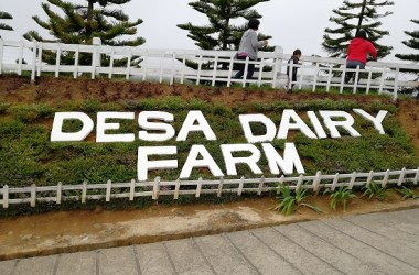 Dairi Fairy Farm KK