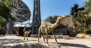 الإمارات-اكسبو 2020