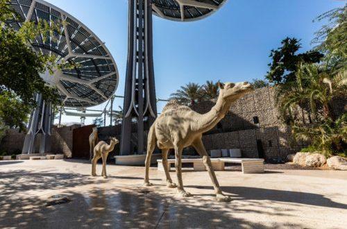 الإمارات تستعد لإنطلاق فعاليات أجنحة إكسبو 2020 – غدا