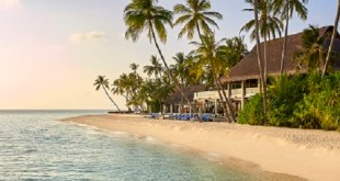 Velaa Private Island: A Luxurious Summer Destination