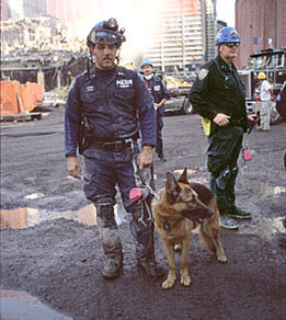 wtc_9-11_officer_with_the_canine_rescue_team_by_joel_meyerowitz
