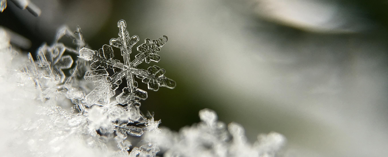 Macro image of snowflakes