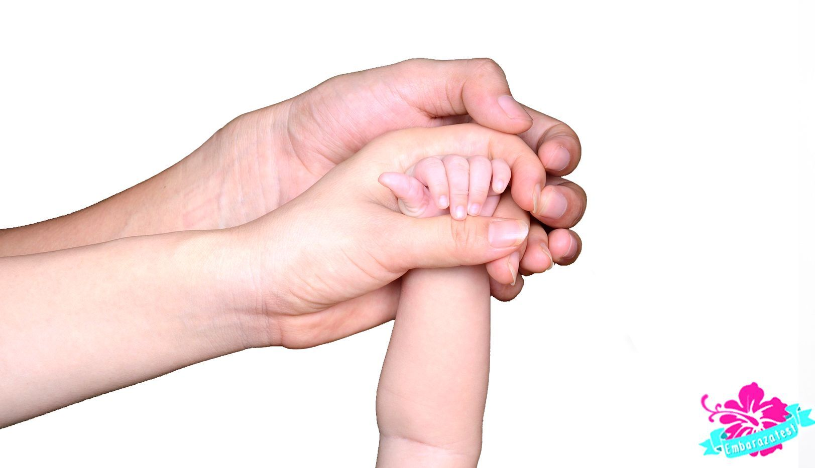 Qué Aspecto Tiene un Test de Embarazo Positivo de Embarazatest