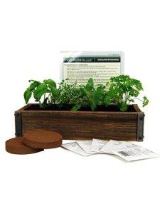 Herb Garden Kit- $43