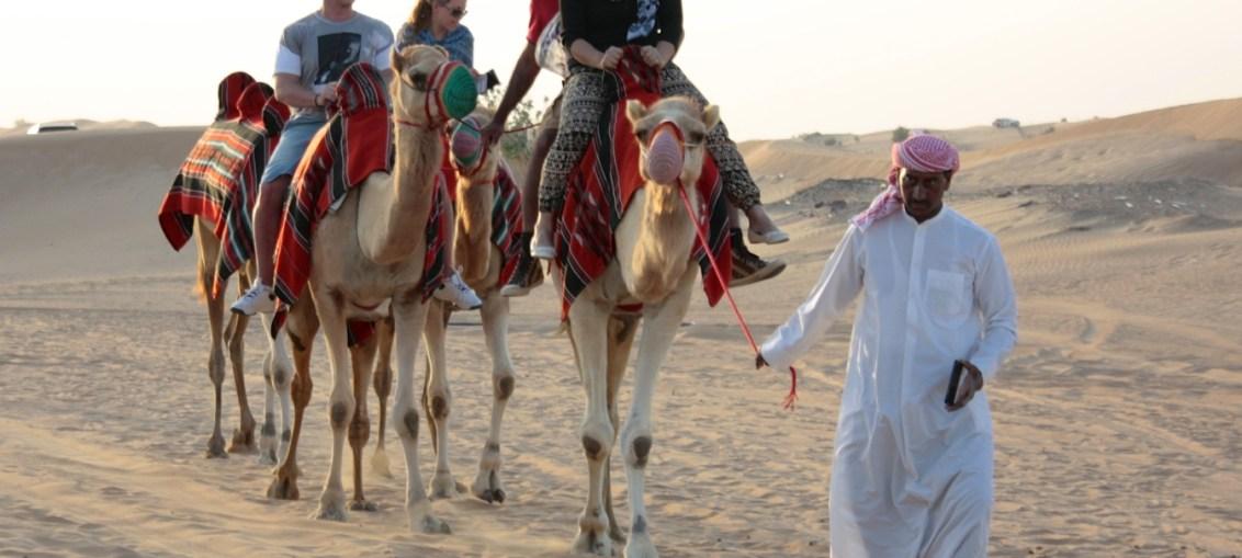 safari deserto dubai knight tour