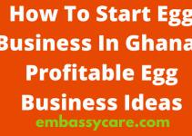How To Start Egg Business In Ghana – Profitable Egg Business Ideas 2021