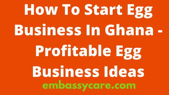 How To Start Egg Business In Ghana